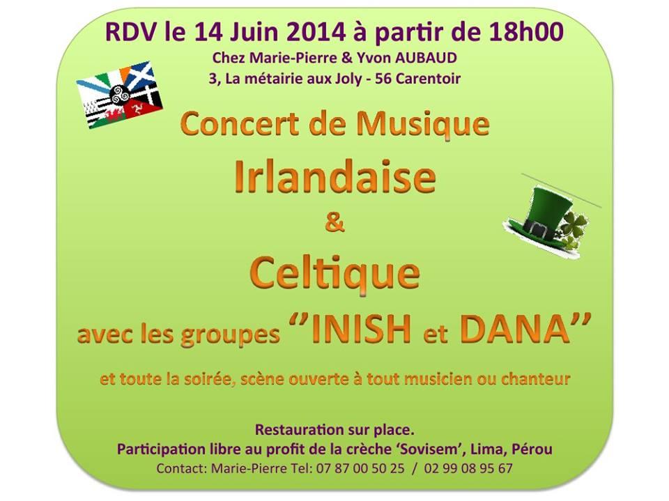 Concert de musique irlandaise et celtique