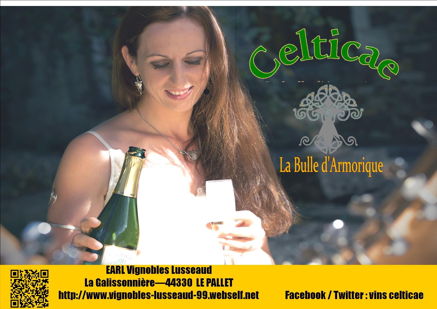 Dana et celticae 1