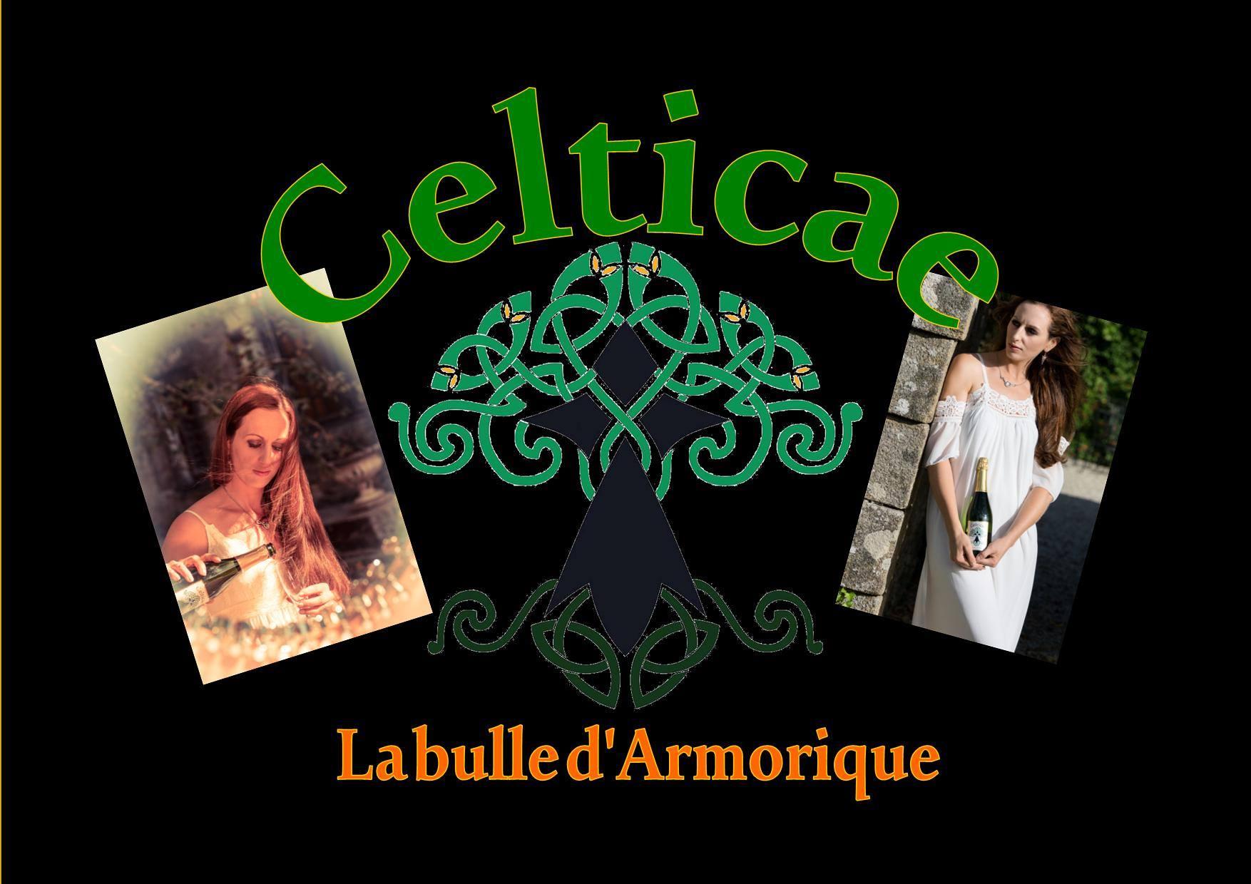 Dana et celticae 3